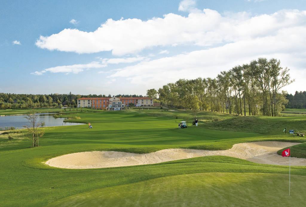 Golf Management Verband Deutschland: Artikel lesen